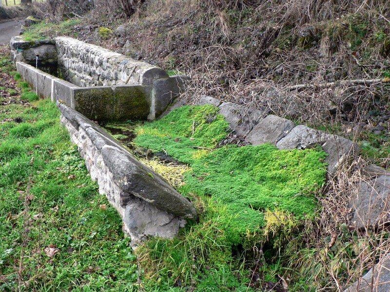 fontaine-abreuvoir-lavoir à Montcheneix