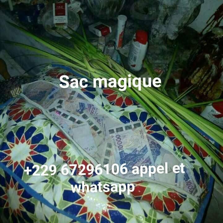 SAC MAGIQUE MULTIPLICATEUR D'ARGENT