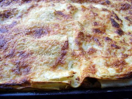 gratin_de_lasagnes_blettes___ricotta___parmesan_002