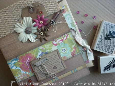 Album_Automne_Patricia_DA_SILVA__97_