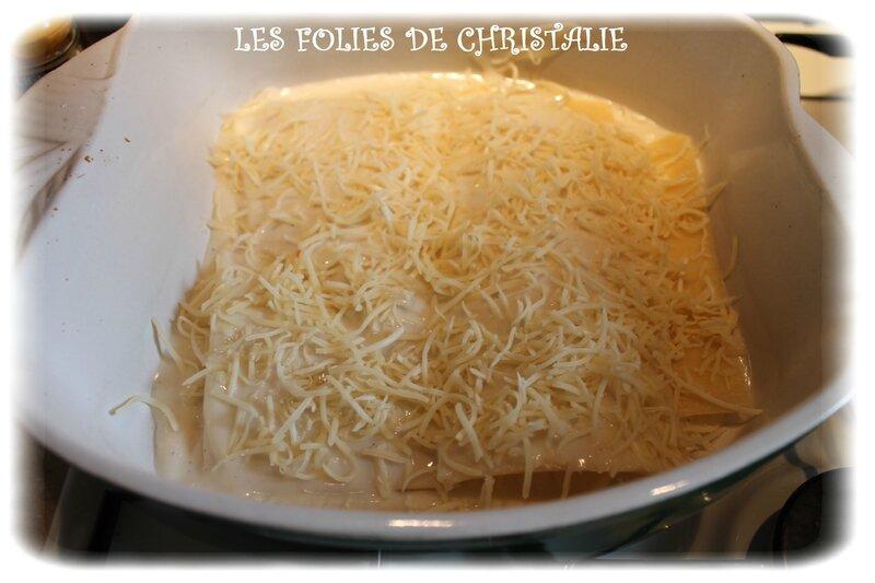 Lasagnes de poulet 10