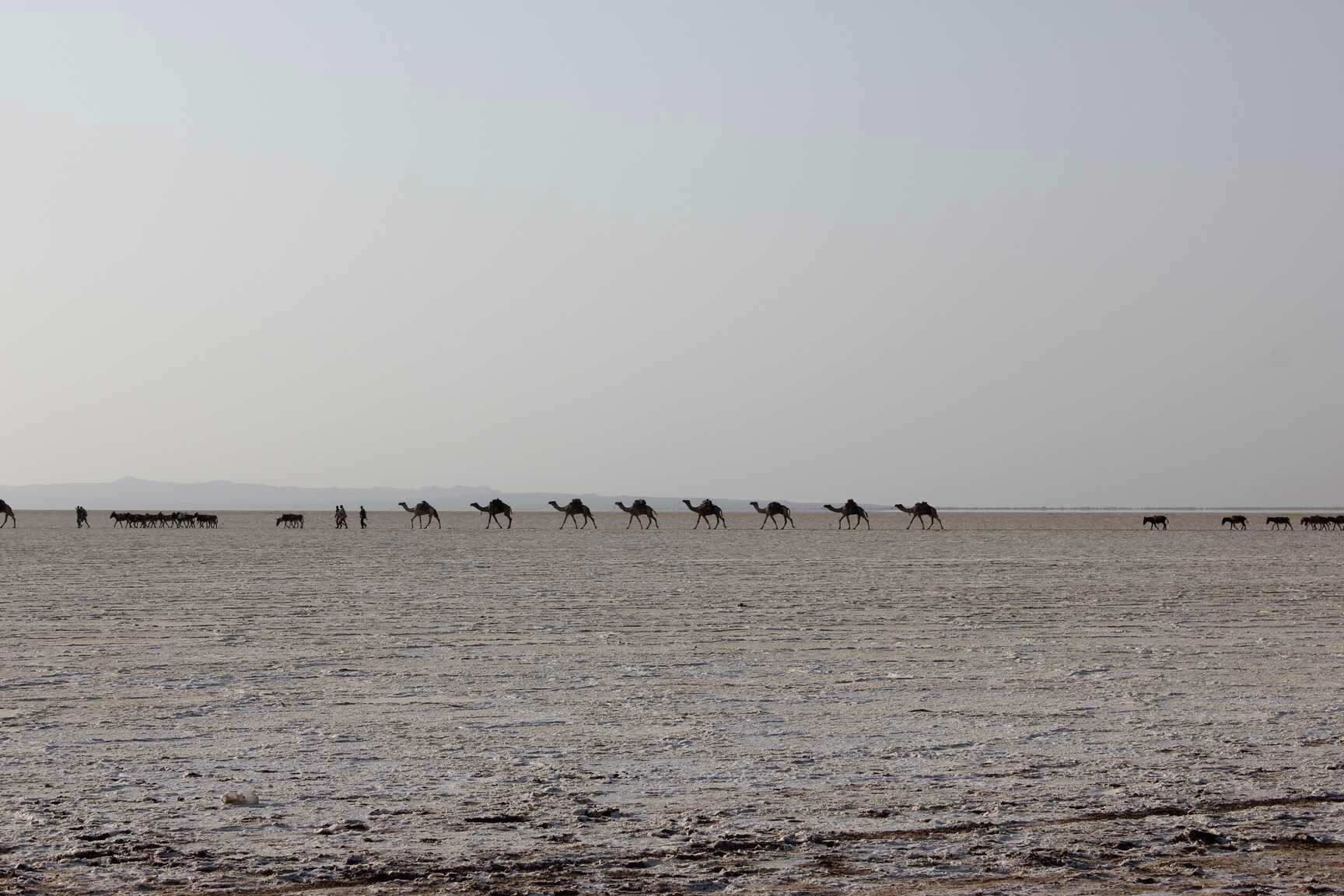 caravane de sel