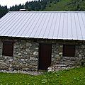 P1050654 (13)