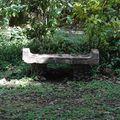 jardin botanique 078
