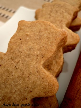 Biscuits1__pices