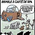 population animale