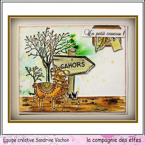 Lama Cahors DT LCDE (1)