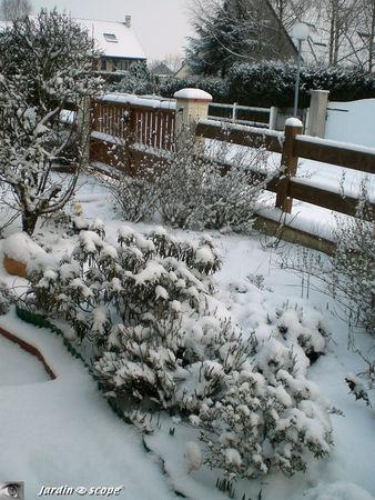 Jardin_sous_la_neige_4