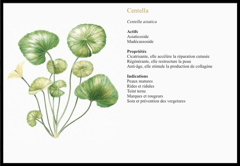 omoye centella
