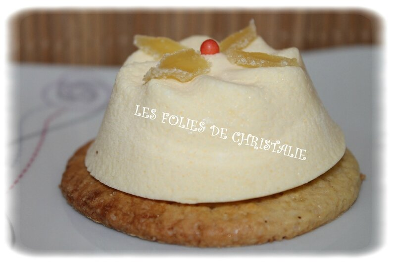 Mousse agrumes 13