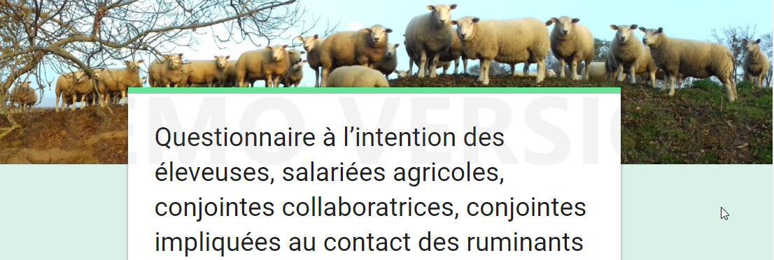 Questionnaire à l'intention des éleveuses,salariées agricoles,conjointes collaboratrices et impliquées au contact des ruminants