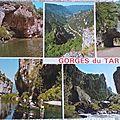 Gorges du Tarn 1 - datée 1989