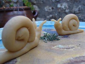 les_petits_escargots_de_Lucie