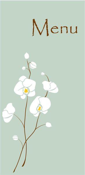 Menu orchid
