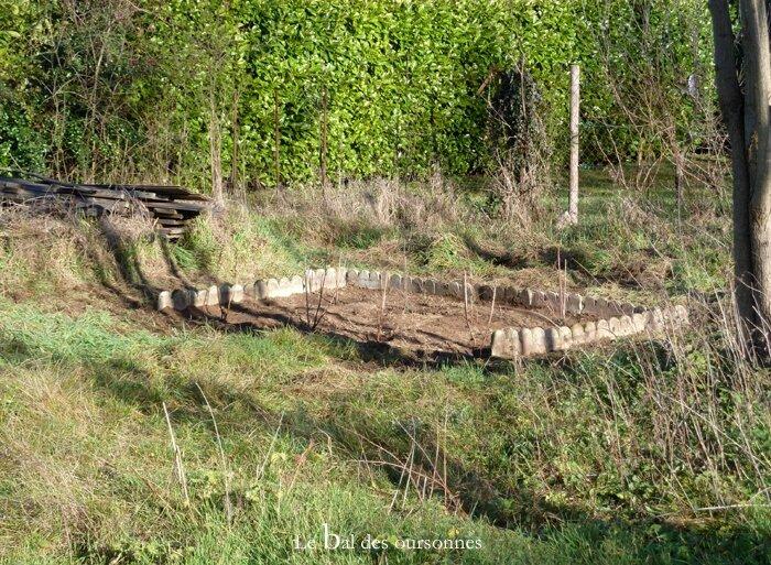 98 Blog Fruitiers Potager Jardin Framboisier Cassissier Groseillier Myrtillier