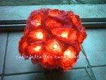 bouquet_allum__1