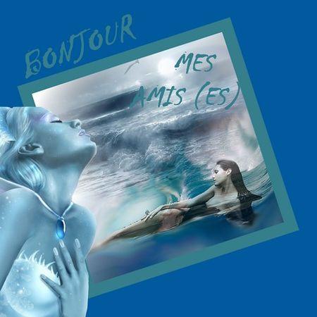 bonjour_mes_amis__es_2_