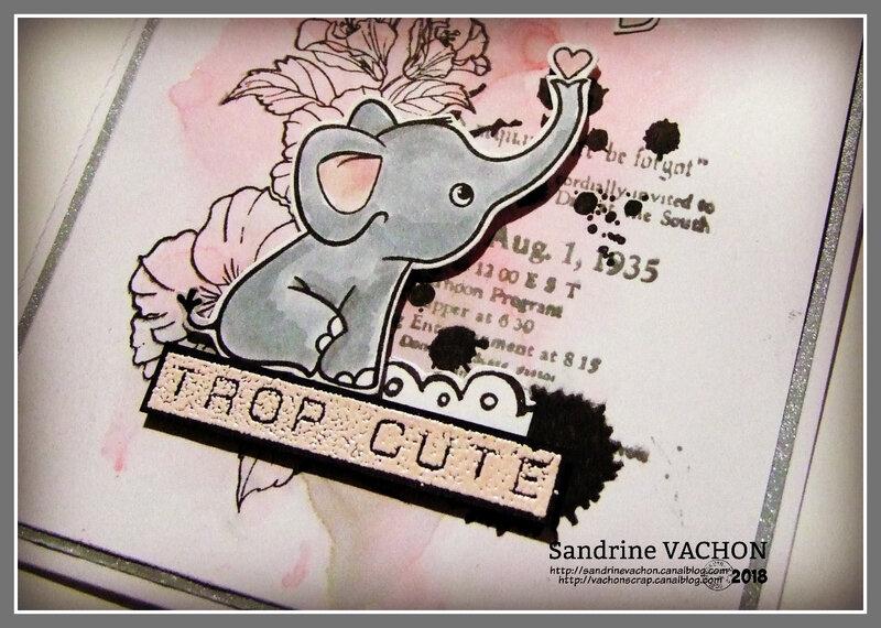 Sandrine VACHON défi 564 blog PCC (3)