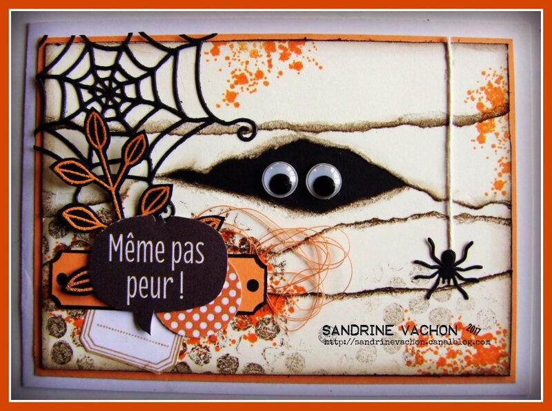 Sandrine VACHON défi 506 DT BLOG PCC (2)