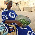 Le Haco, feuilles de haricots - préparation avec la graine de mil, traditionnel chez les Pulaar - Village de Gawdé Bofé