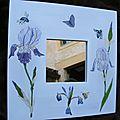 iris & insectes