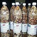 Comment guerir la faiblesse sexuelle produit très efficace du marabout voyant tamasse