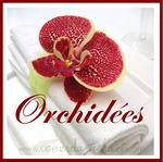 orchid_e_orama