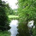 Arboretum Vallée aux Loups 038