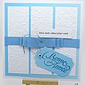 Cartes de vœux au ruban bleu - blue ribbon best wishes cards