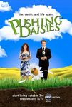 pushing_daisies_ver2_xlg