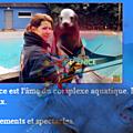 Bérénice : soigneur au zoo.