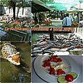 mosa_que_ferme_aux_crocodiles