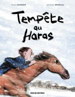 Tempête au Haras Chris Donner & Jérémie Moreau Rue de Sèvres