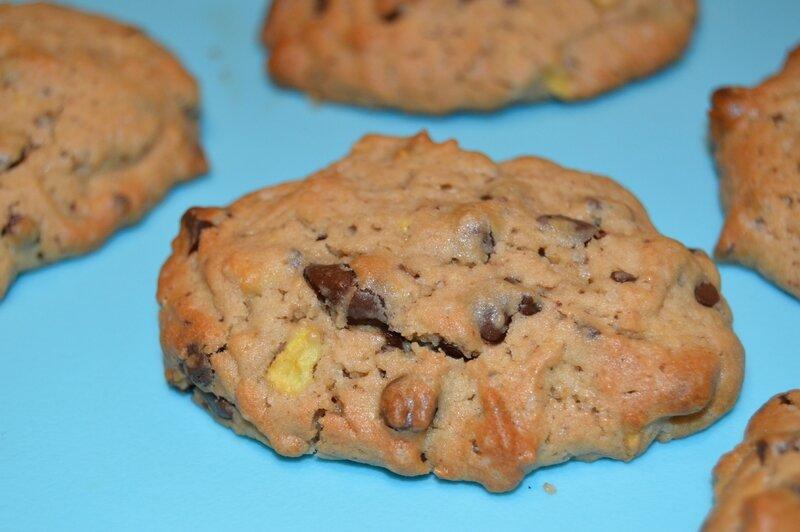 Cookies pomme, pépites de chocolat (1)