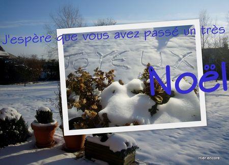 D_co_noel_20109