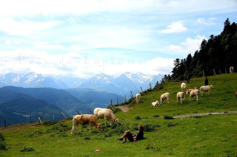 IMG_8377_Hautes-Pyrénées