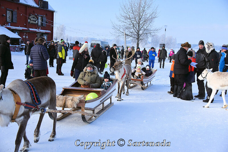 reindeer_rides_for_families_oulu_-15