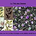 Thé des Dames_06-07-2017