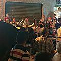 Les bœufs qui tirent le char de la Procession