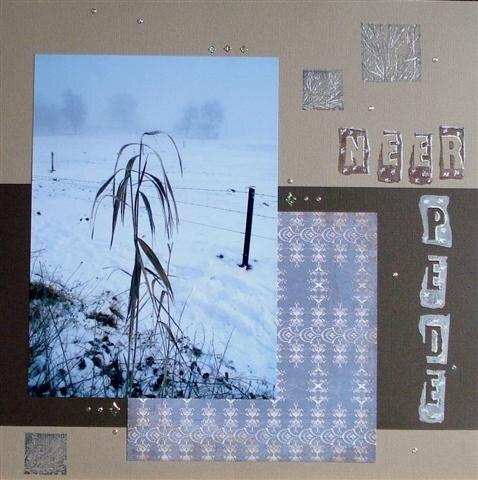 Neerpede en hiver 01