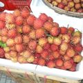 2010-11-07 Ho Chi Minh City (103)