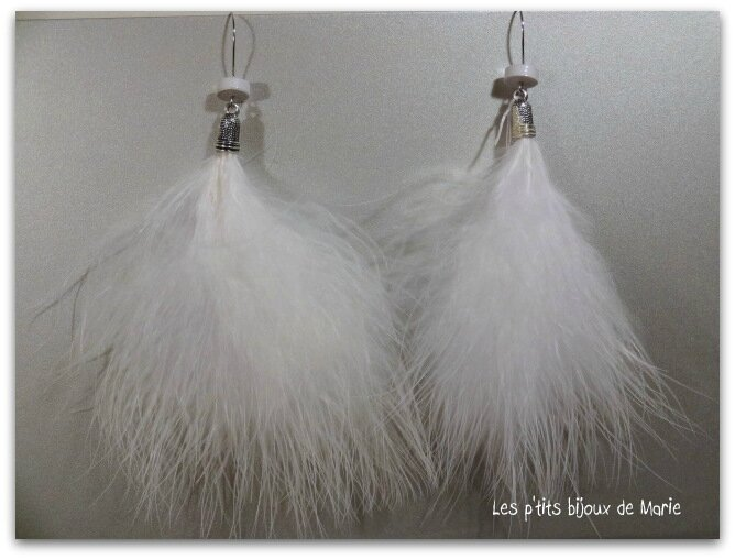 BO plumes blanches