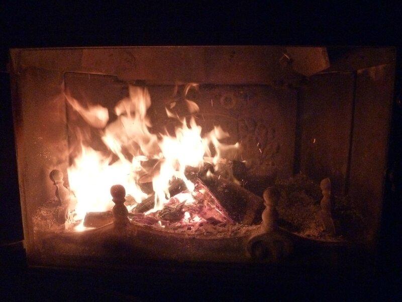 1-feu de cheminée (2)