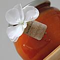 Confiture d'abricots & découverte gourmande ...
