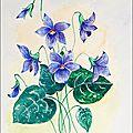 Aquarelle 18x24-24x30cm (Les violettes) [2]