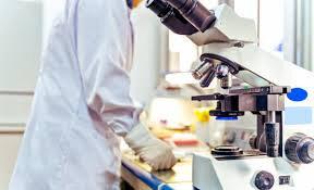 Un gène impliqué dans l'épilepsie et l'autisme découvert par une équipe du CHU de Montpellier