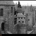 CARCASSONNE - multi-tours