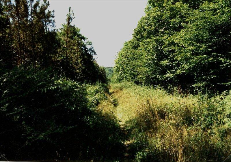 sentier entre Borie-Petit et Peyrinet