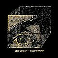 Asaf avidan - gold shadow -