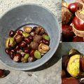 Carnets d'automne: les marrons d'inde,les noix et mattin partarrieu...